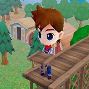 Harvest Moon The Lost Valley Nintendo 3DS Bridge