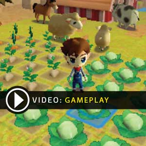 Harvest Moon The Lost Valley Nintendo 3DS Gameplay Video