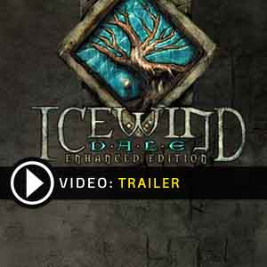 Icewind Dale Enhanced Edition Digital Download Price Comparison