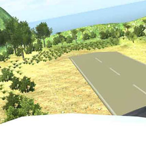 Island Flight Simulator - The Island's Airstrip