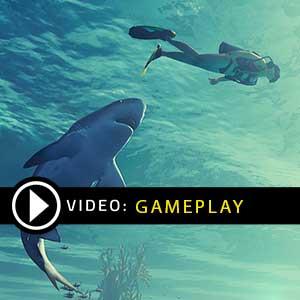 Maneater Gameplay Video