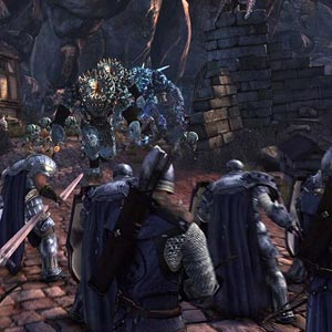 Neverwinter Battle Troops