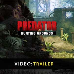 Predator Hunting Grounds Download Cheaper Price Comparison