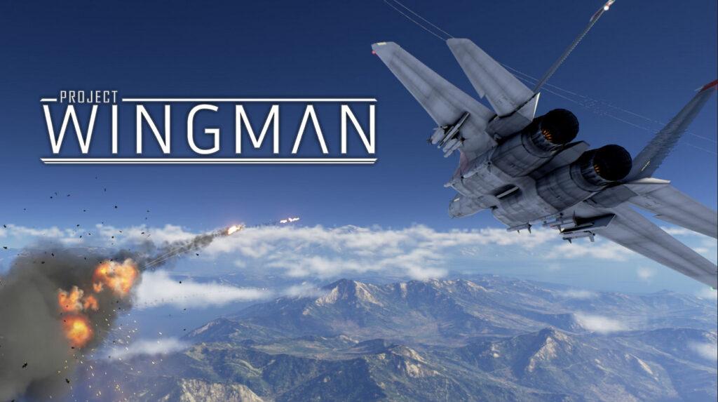 compare best project wingman deals