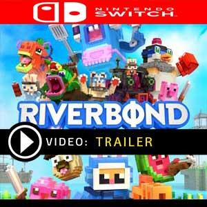 Riverbond Nintendo Switch Prices Digital or Box Edition