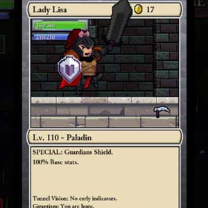 Rogue Legacy Character