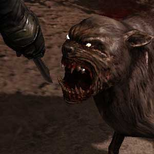 S.T.A.L.K.E.R. Call Of Pripyat - Mutated Dog
