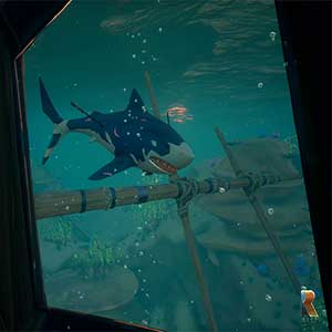 Sea of Thieves Shark