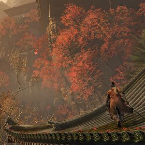 Sekiro Shadows Die Twice Autumn