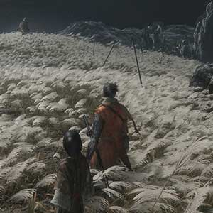 Sekiro Shadows Die Twice: Sekiro and Kuro