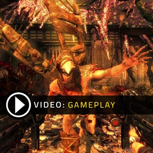 Shadow Warrior Gameplay Video