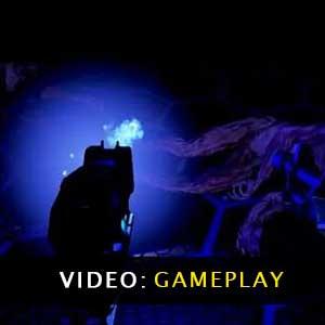 Star Phoenix Gameplay Video