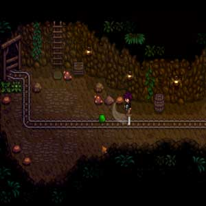 Stardew Valley Mysterious cave
