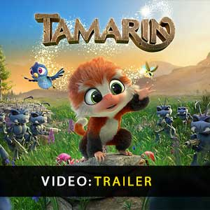 Tamarin Digital Download Price Comparison
