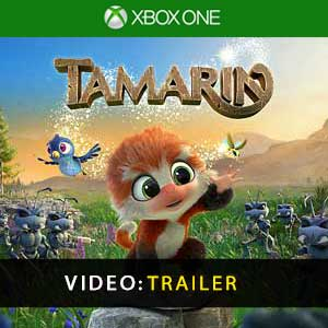 Tamarin Xbox One Prices Digital or Box Edition