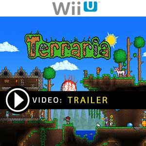 Terraria Nintendo Wii U Prices Digital or Box Edition