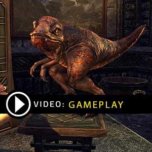 The Elder Scrolls Online Crowns PS4 Gameplay Video