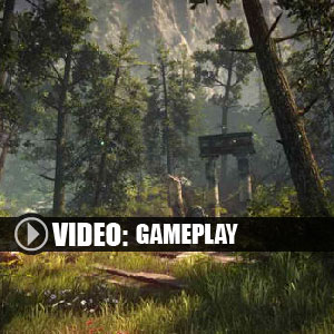 The Forest Online Multiplayer Gameplay