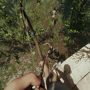 The Forest Bow and Arrow