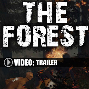 The Forest Digital Download Price Comparison