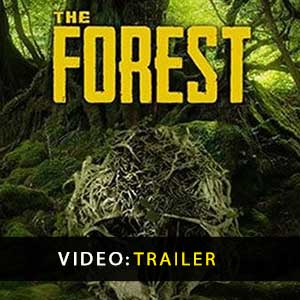 The Forest Digital Download Price Comparison