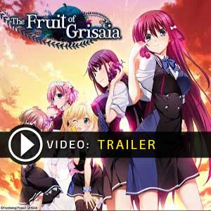The Fruit of Grisaia Digital Download Price Comparison