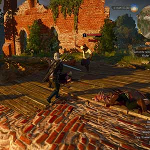 The Witcher 3 Wild Hunt Fight