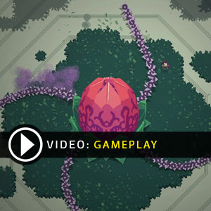 Titan Souls Gameplay Video