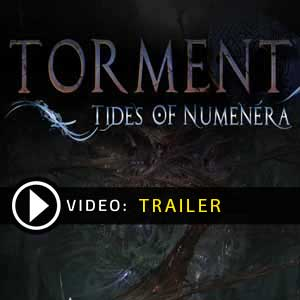Torment Tides of Numenera Digital Download Price Comparison
