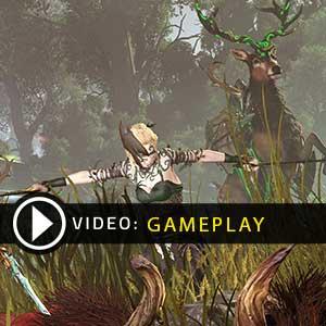 Total War WARHAMMER Realm of The Wood Elves Digital Download