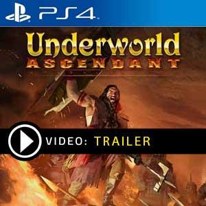 Underworld Ascendant PS4 Prices Digital or Box Edition