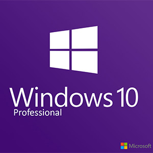 Windows 10 Professional Digital Download Price Comparison