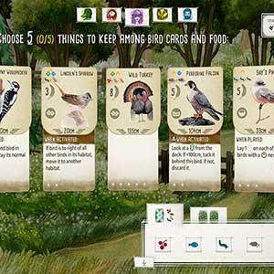 Wingspan - Bird cards