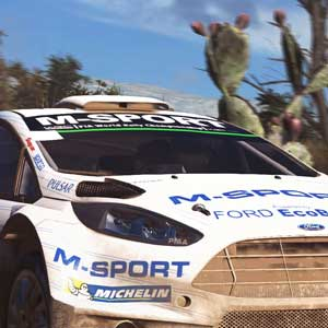 WRC 5 Car Race